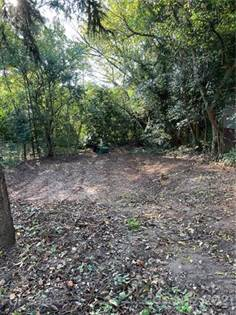Lots And Land for sale in 1312 N Davidson Street, Charlotte, NC, 28206