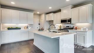 Multi-family Home for sale in 2757 Starburst Drive, Little Elm, TX, 75068