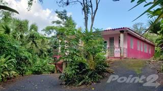 Residential Property for sale in AGUAS BUENAS - Bo. Mulas KM 46 HM 8 PR 156 LOT #1, Aguas Buenas, PR, 00703