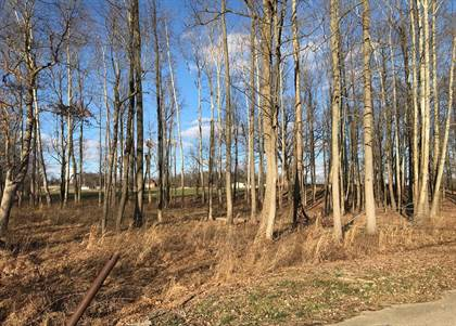 Lots And Land for sale in 160 Jeremiah Lane, Calhoun, KY, 42327