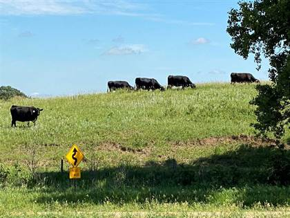 Farm And Agriculture for sale in Rural Hwy 84, Center, NE, 68724