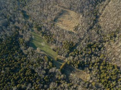 Farm And Agriculture for sale in TBD State Highway 17, West Plains, MO, 65775
