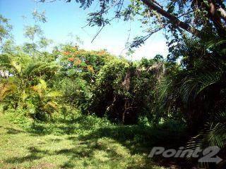 Land for sale in Anasco, PR 60.6 cuerdas, A?asco, PR, 00610