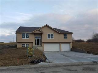 Single Family for sale in 429 Spring Branch Drive, Raymore, MO, 64083