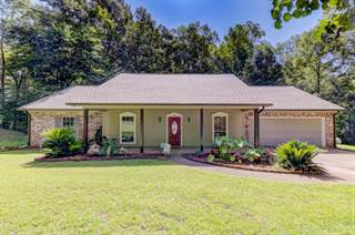 Other Real Estate for sale in 121 Laura Lake Road, Vicksburg, MS, 39180