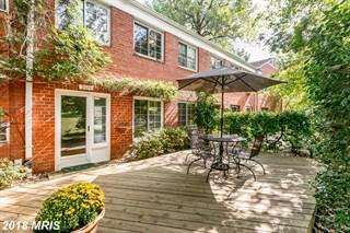 Condo for sale in 3324 CORYELL LN #., Alexandria, VA, 22302