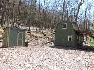 Other Real Estate for sale in 860 Jones Road, Greater Rote, PA, 17751
