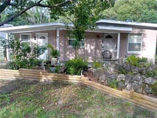 Single Family for sale in 210 N TRUETT STREET, Leesburg, FL, 34748