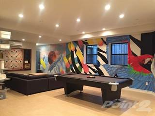 Apartment for rent in Common Havemeyer, Brooklyn, NY, 11211