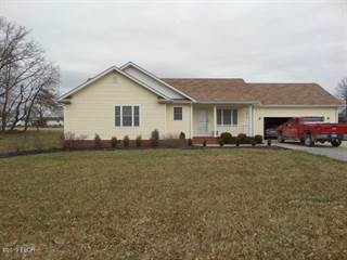 Single Family for sale in 2 Holly Street, Dahlgren, IL, 62828