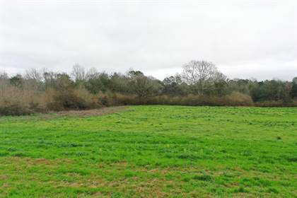 Lots And Land for sale in 00 Stanley Ln., Sumrall, MS, 39482
