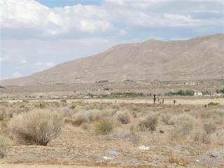 Land for sale in 0 Hinton-Castle Rock/Canard Ave Street, Apple Valley, CA, 92345