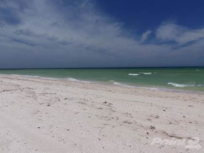 For Sale: Virgin Beachfront Lot, Exclusive Area!, Chuburna, Yucatan - More  on POINT2HOMES com