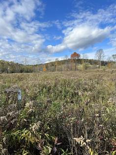 Lots And Land for sale in 1564 CARLTON RD, Hampton, NY, 12887