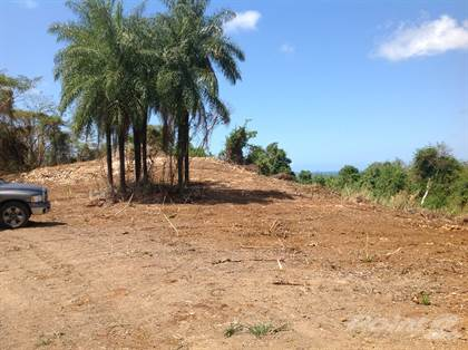 Lots And Land for sale in Barrio Higuillar Dorado 3 Segregated Parcels Ideal for Development, Dorado, PR, 00646
