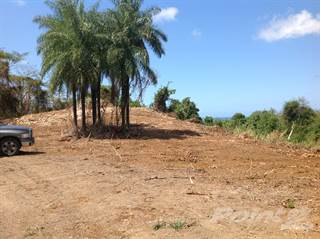 Land for sale in Barrio Higuillar Dorado 3 Segregated Parcels Ideal for Development, Dorado, PR, 00646