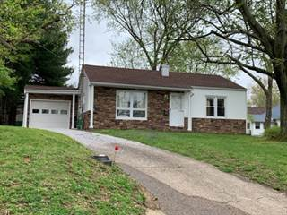 Single Family for sale in 20 West Poplar, Albion, IL, 62806