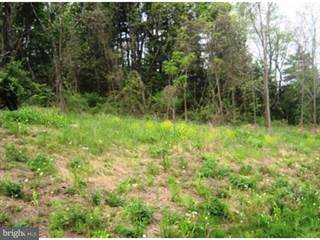 Farm And Agriculture for sale in LOT 7 LITTLE RD, Perkiomenville, PA, 18074