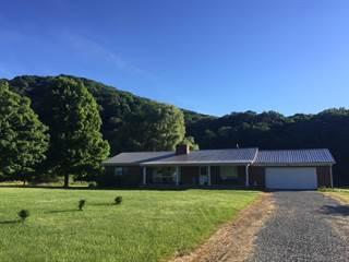 Single Family for sale in 8348 Sweet Springs Valley Rd, Gap Mills, WV, 24941