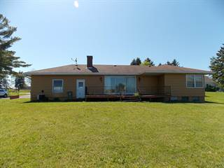 Single Family for sale in 30 Mill Street, Cheboygan, MI, 49721