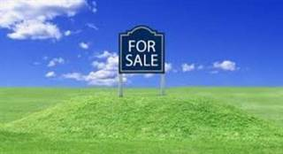 Land for sale in 321 East 95th Street, Chicago, IL, 60619
