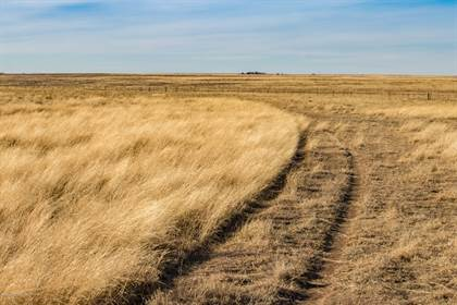 Lots And Land for sale in S Spearman 640, Spearman, TX, 79081