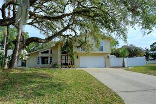 Single Family for sale in 3151 SAN MATEO STREET, Clearwater, FL, 33759
