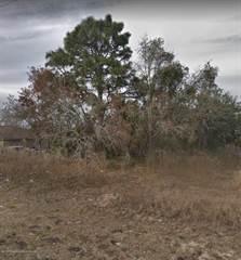 Land for sale in 00 Prospect Street, Spring Hill, FL, 34609