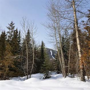 Lots And Land for sale in Lot 22 Timberlanding Estates, Fernie, British Columbia, V0B1M6