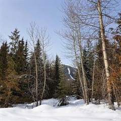 Land for sale in Lot 21 Timberlanding Estates, Fernie, British Columbia, V0B1M6