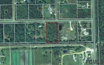 Lots And Land for sale in 3601 Clove Avenue, Bunnell, FL, 32110