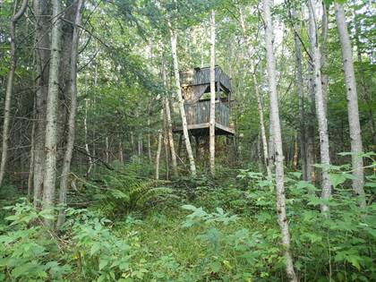 Lots And Land for sale in 16706 Camp A RD, Gould City, MI, 49838
