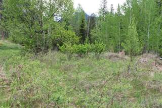Land for sale in LT 25-27 BEAVERFOOT STREET, Spillimacheen, British Columbia