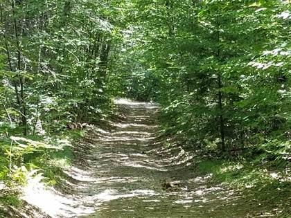 Lots And Land for sale in 0 Libby Road, Effingham, NH, 03882