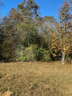 Lots And Land for sale in 493 Oscar Lee Rd, Poplarville, MS, 39470