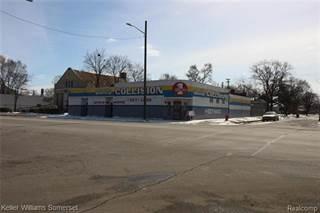 Comm/Ind for sale in 13400 E 7 MILE Road, Detroit, MI, 48205