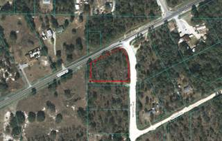 Land for sale in 0 SW 167th Avenue, Ocala, FL, 34481