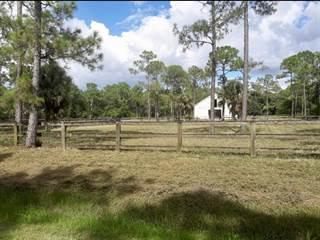 Jupiter In Oaks >> Land For Sale Sandy Oaks Fl Vacant Lots For Sale In Sandy Oaks