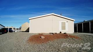 Residential Property for rent in 3130 William Drive, Lake Havasu City, AZ, 86404