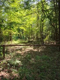 Lots And Land for sale in 112th Avenue, Fennville, MI, 49408