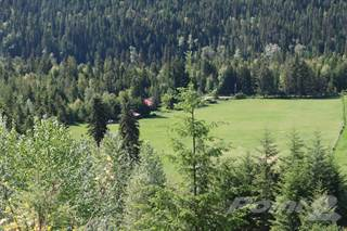 Farm And Agriculture for sale in Camel's Hump Guest - Horse and Education Ranch, Lumby, British Columbia, V0E 2G1
