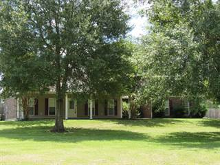 Single Family for sale in 48 Julianne Drive, Carriere, MS, 39426