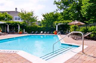 Apartment for rent in Broadlands - The Spruce Town Home, Ashburn, VA, 20148