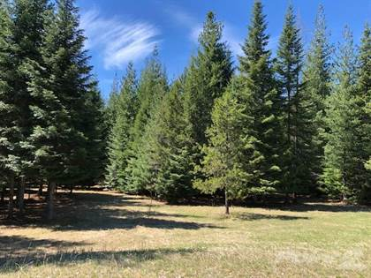 Lots And Land for sale in 8042 Bull Lake Road, Troy, MT, 59935