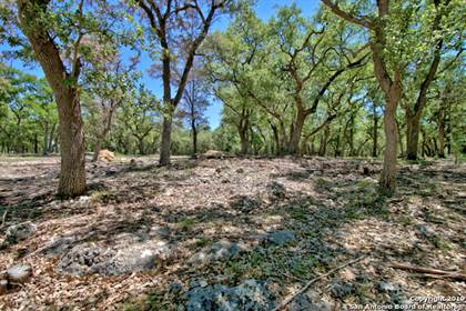 Farm And Agriculture for sale in 33807 BLANCO RD, Bulverde, TX, 78163