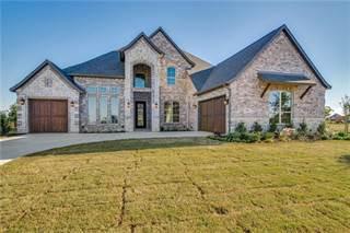 Single Family for sale in 1806 Turtle Creek Lane, Gunter, TX, 75058
