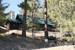 Residential Property for sale in 319 Big Bear Trail, Big Bear Lake, CA, 92315