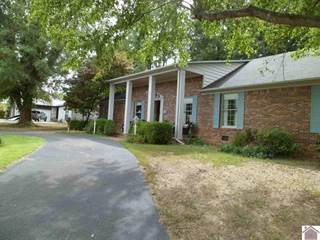Single Family for sale in 201 ERWIN DR, Mayfield, KY, 42066