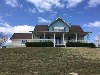 Single Family for sale in 23316 Rock Springs Hollow Road, Thebes, IL, 62990