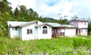 Residential for sale in Adjuntas Bo Capaez, Adjuntas, PR, 00601